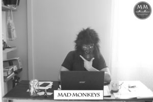Mad Monkeys Consulting; communication; marketing; corse : bastia