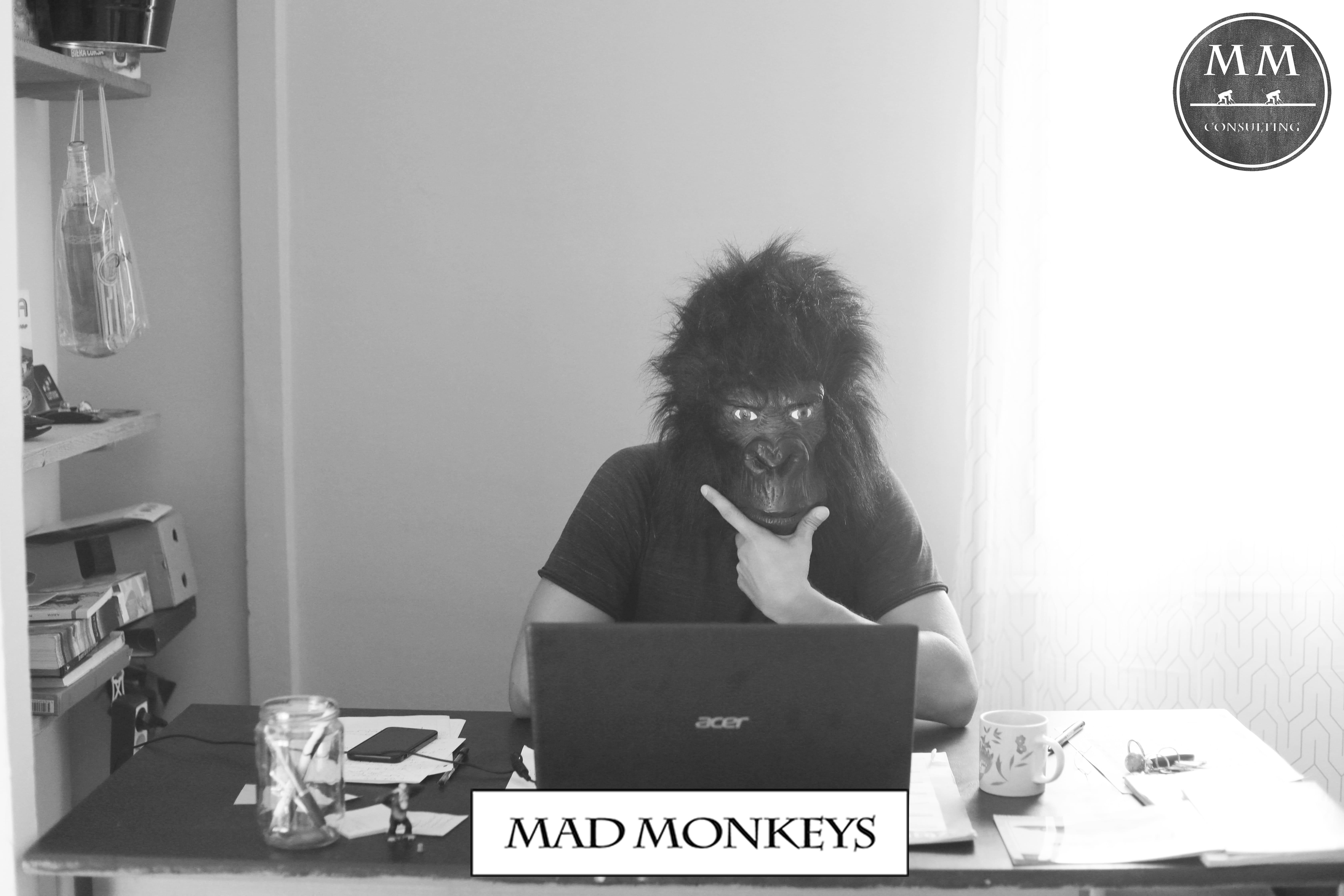 Mad Monkeys Consulting; communication; marketing; corse : bastia